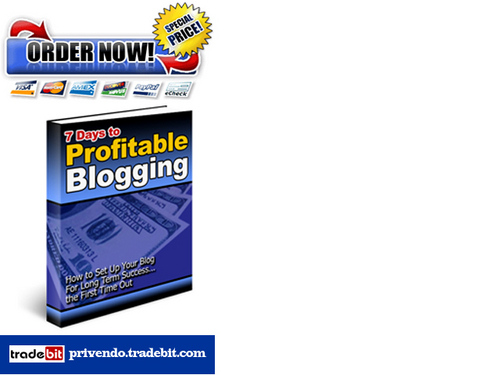 Product picture 7 Days to Profitable Blogging